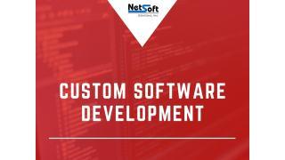 Custom Software Development.pptx
