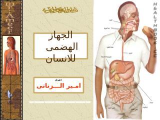 (2) الجهاز الهضمى - امير.pps