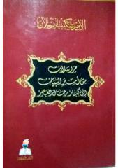 مراسلات من أمير البيان إلى كبار رجال العصر نجيب البعيني.pdf