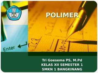 13. polimer.pptx