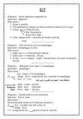 museum Text Practical.pdf